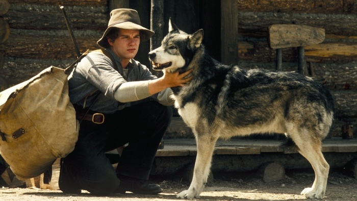 Book Review: White Fang by Jack London