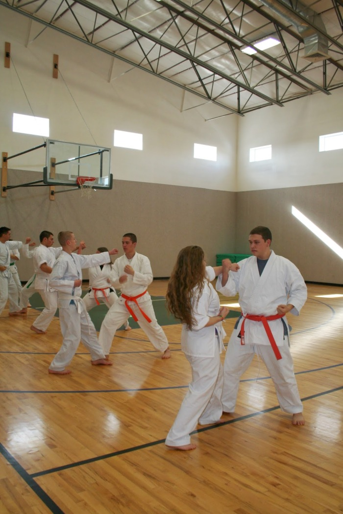 Should You Enroll Your Daughter in Co-Ed Karate?
