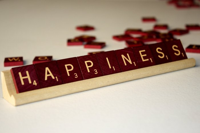 Your Happiness is an Opportunity and Not a Right