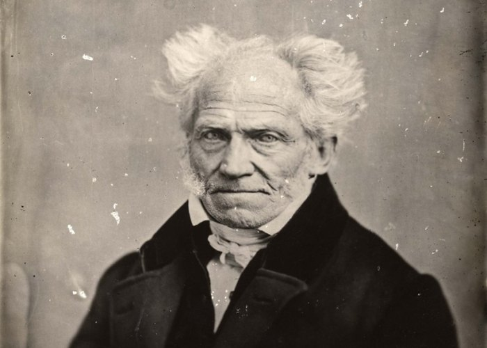 On Shopenhauer's The World as Will and Idea